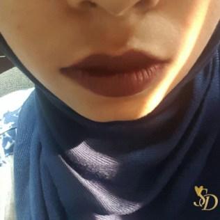 vice lipstick swatch ilmu1