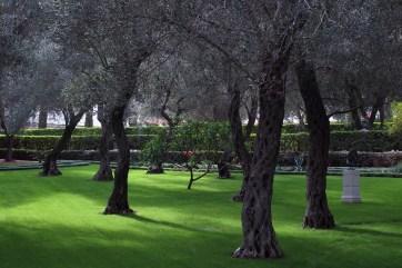 Bahai'i Gardens in Haifa
