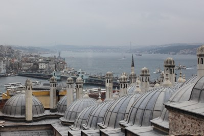 Row of domes