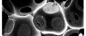 通常のウレタン、スポンジの構造