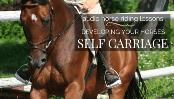 Starting a Green or Young Horse - Part 1 - Strides for Success