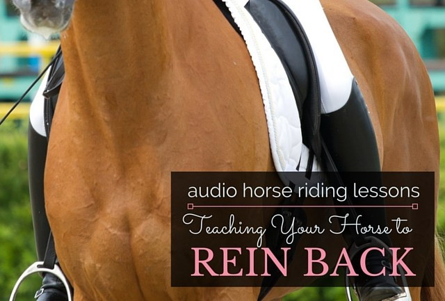 Teaching Your Horse to Rein Back