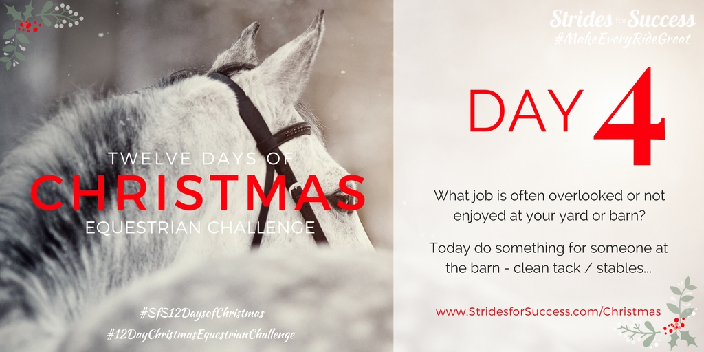 SfS 12 Days of Christmas Equestrian Challenge Day 3