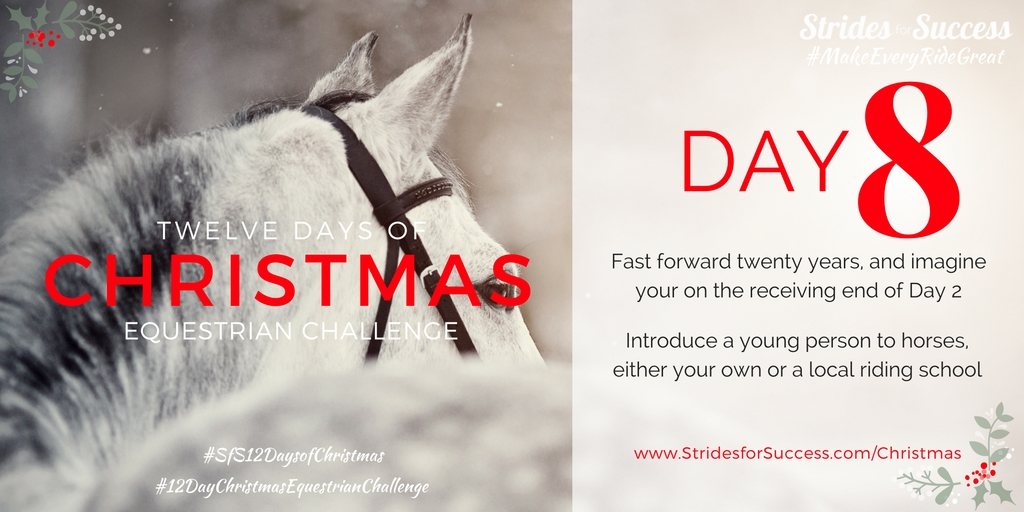 Strides for Success 12 Days of Christmas Equestrian Challenge Day 8