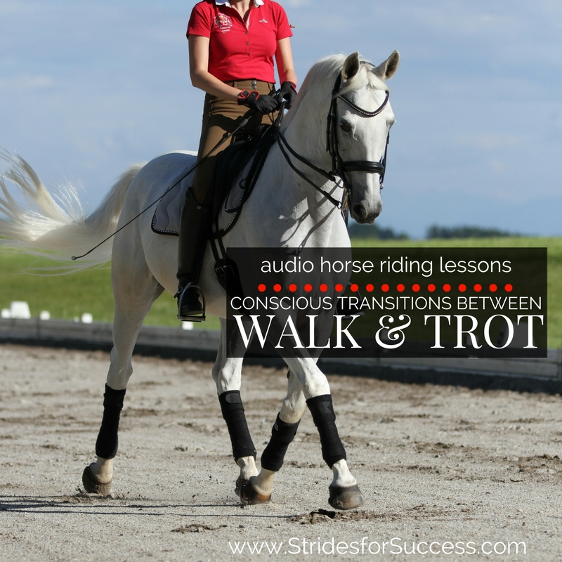 Conscious Transitions Between Walk and Trot