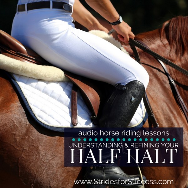 Understanding and Refining the Half Halt - Strides for Success