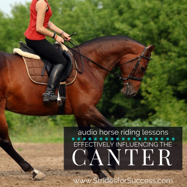 Effectively Influencing the Canter with Your Body