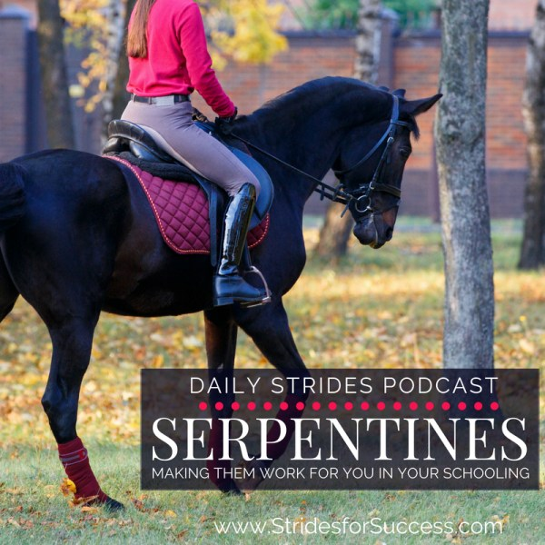 Serpentines, Making them work for you in your schooling