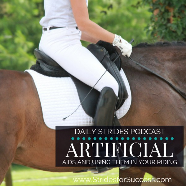 Artificial Aids and Using Them in Your Riding
