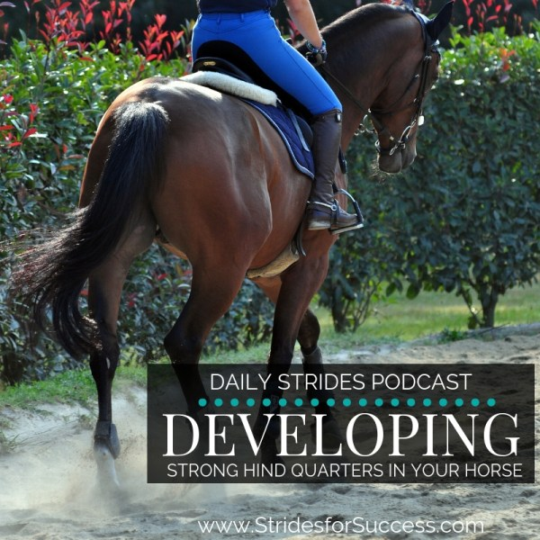Developing Strong Hind Quarters in Your Horse