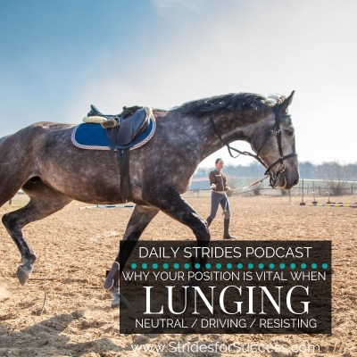 Why Your Position while Lunging is Everything