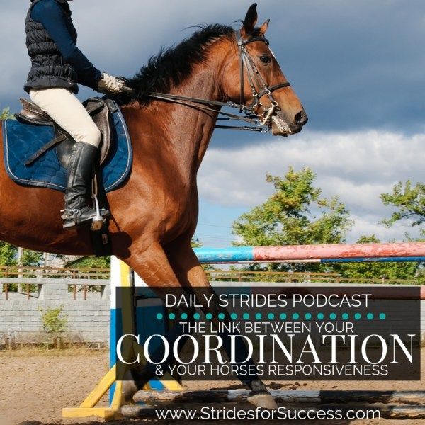 The Link Between Your Coordination and Your Horses Responsiveness