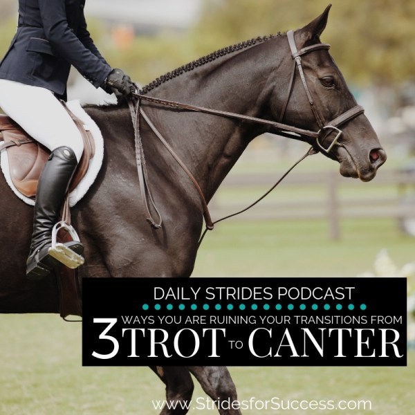3 Ways You Are Ruining Your Transitions from Trot to Canter