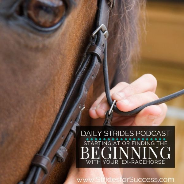 Where is the Beginning with Your OTTB or Ex-Racehorse