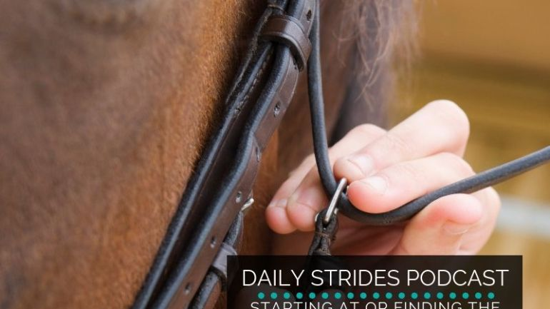 Where is the Beginning with Your OTTB / Ex-Racehorse?