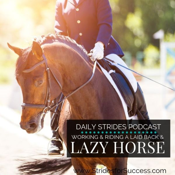 Working and Riding a Lazy or Laid Back Horse