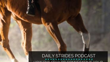 How Engaged is Your Horse's Core?