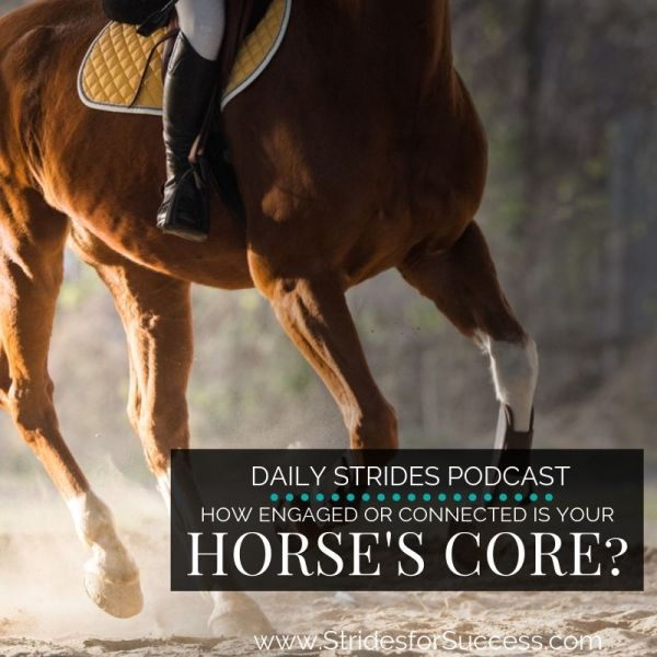 How Engaged is Your Horses Core?