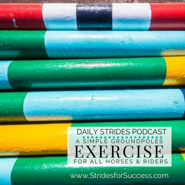 Simple Groundpole Exercise to Ride this Week with Your Horse
