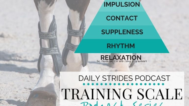 [Training Scale Series] 2. Suppleness in Your Horse