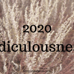 2020 ridiculousness