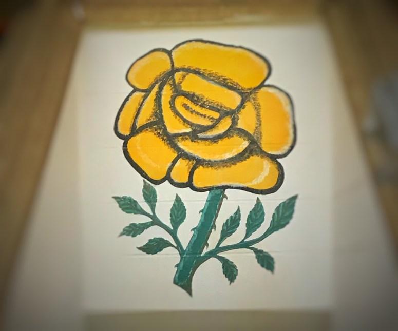Melrose rose