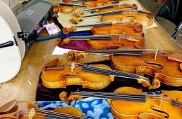 Oberlin Violin Makers Workshop, photo by David Van Zandt