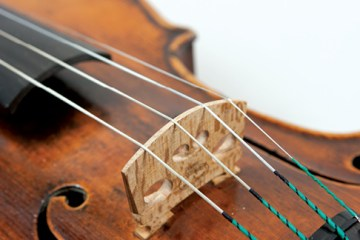 violin strings and bridge