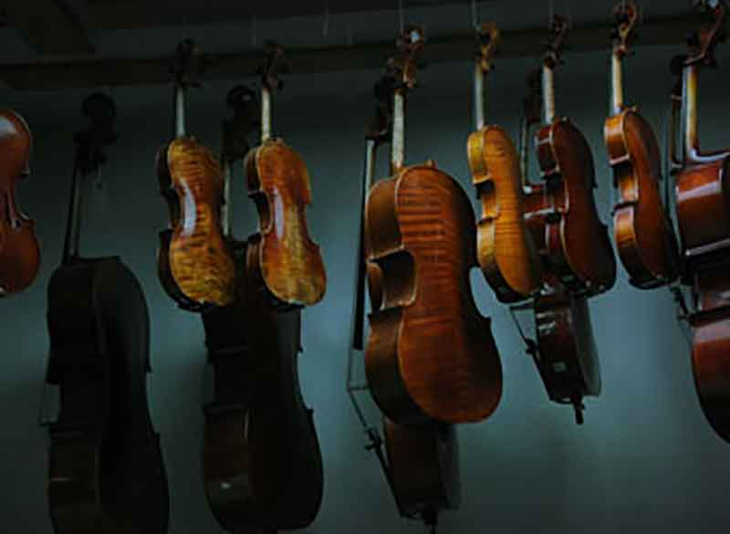 Thomas Metzler Violin  Shop, est. 1979