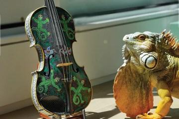 "Violinist Lara St. John's ""shiddle"" painted in Oaxaca"
