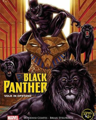 black panther 2 scaled