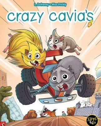 crazy cavias 2 scaled