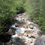 Water flowing down the mountain in Franconia Notch