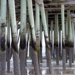 Old Orchard Beach Pier from under the pier
