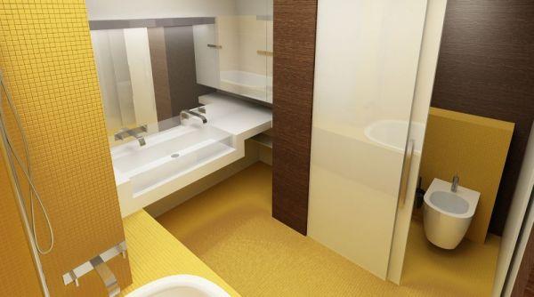 Совмещенная ванная и санузел