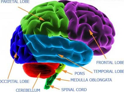 Cerebellar stroke - it's about more than coordination and