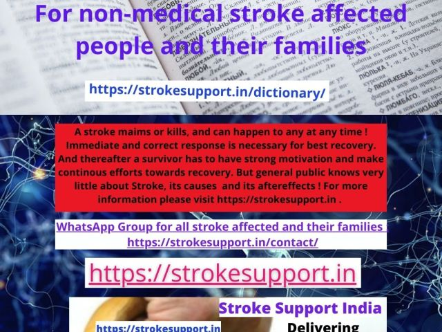 What do various stroke related terms mean ?