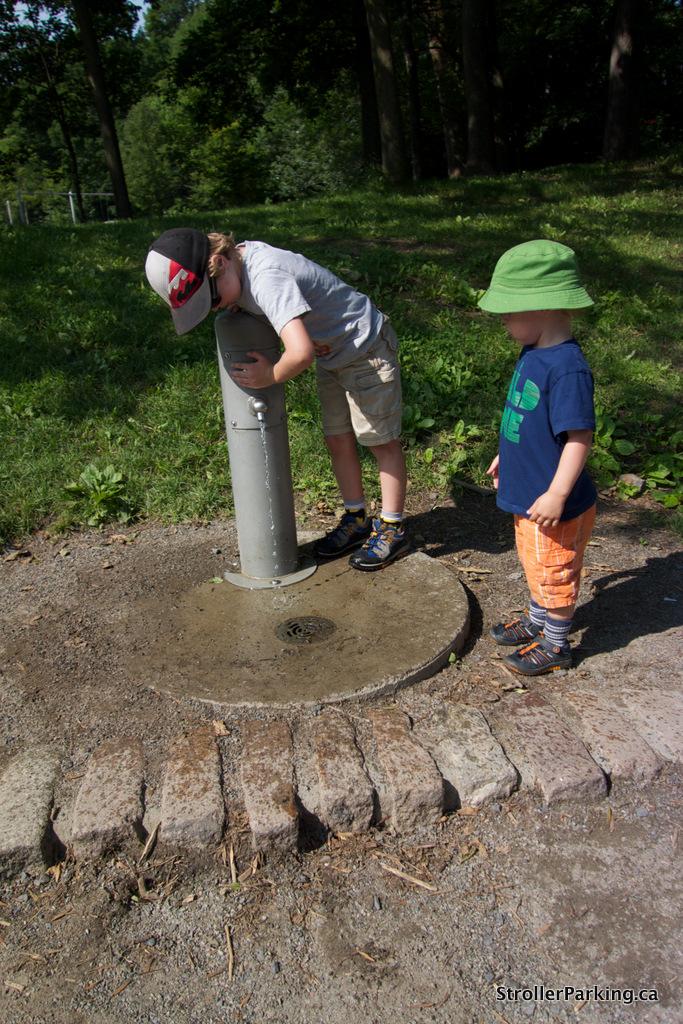 Rediscovering Photography On Summer >> Mount Royal (Salamander) Park, Montreal