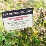 Marijuana Criminal Charges