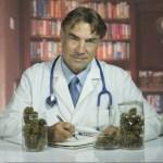 safety of marijuana