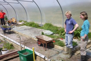 Polytunnel tidied up
