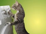 energiesparender-kondenstrockner
