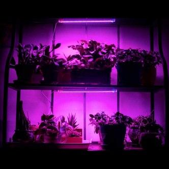 grop lampe energiesparend