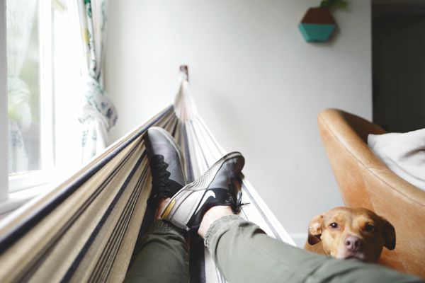 simple pleasures Photo by Drew Coffman on Unsplash