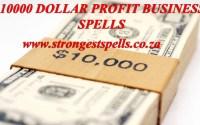 10000 dollar profit business spells