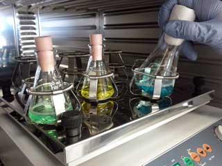 research-beakers