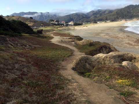 walking path near beach