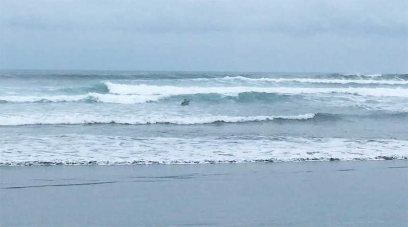 boogie-boarding travel in Costa Rica