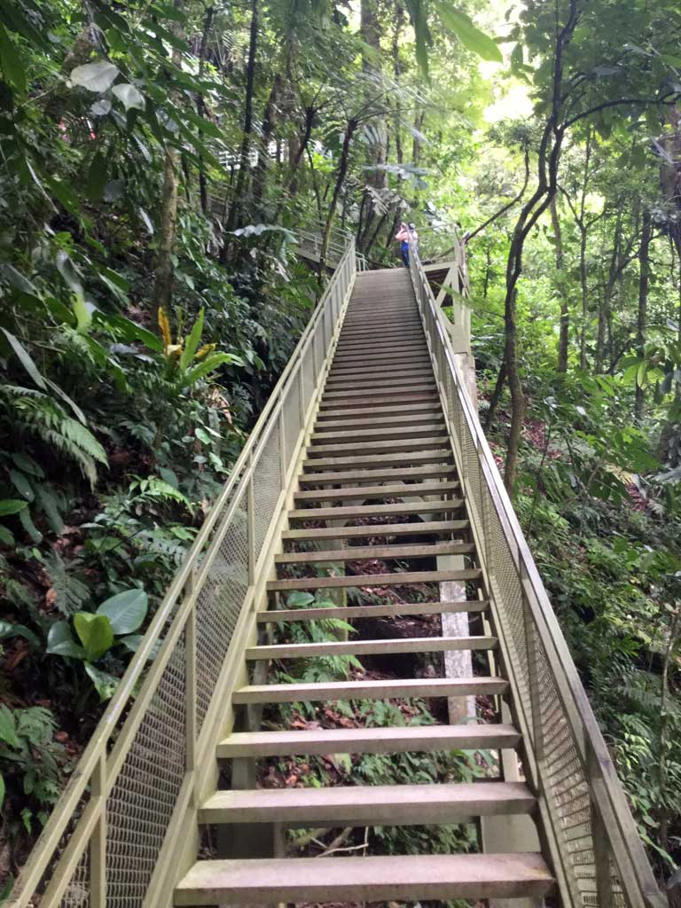 Stairs up from La Fortuna Waterfalls travel