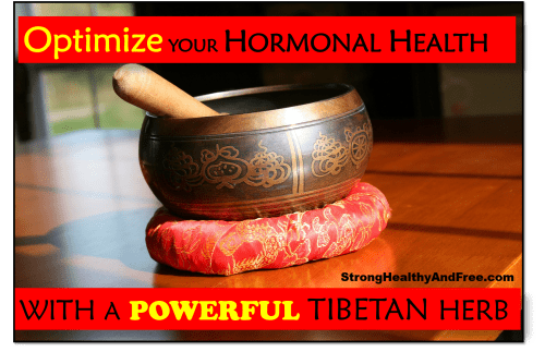 Learn how to optimize your hormonal health with a powerful Tibetan herb. This herb can also reduce fatigue, increase libido and decrease cortisol levels.